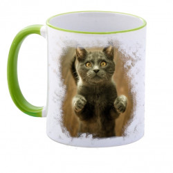 Photo Mug - Color