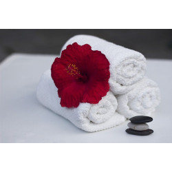 Hand Towel - White. Guesthouse quality bathroom towels